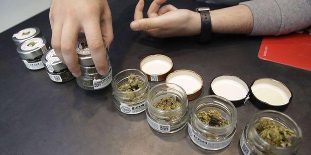 La légalisation du cannabis fait débat en France.