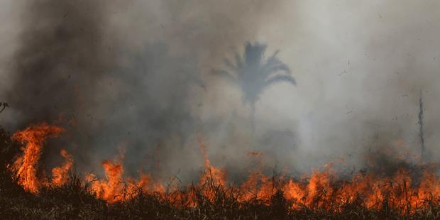 En Amazonie, le feu qui cache la déforestation